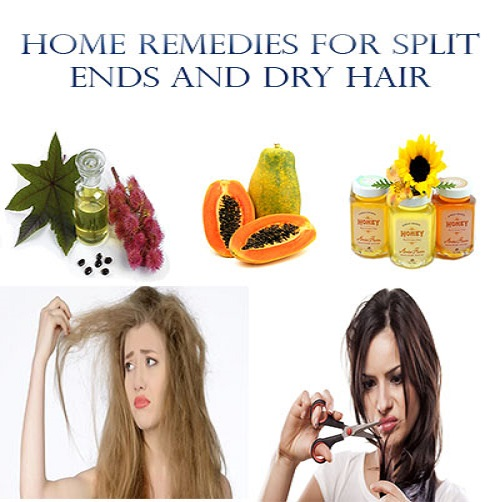 how to avoid split ends home remedies
